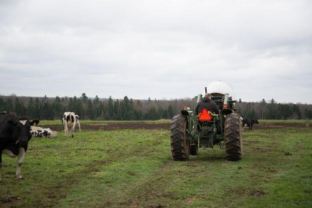 Farm Portfolio-0001.jpg