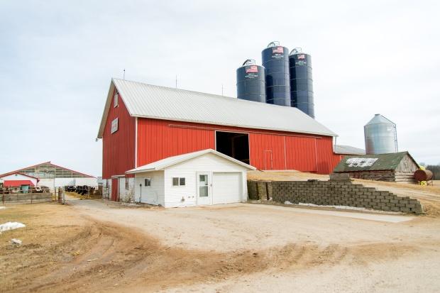 Junion Farm blog-1