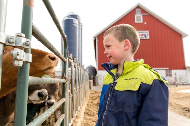 Junion Farm blog-15