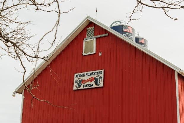 Junion Farm blog-4