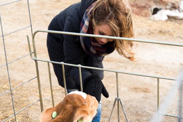 Junion Farm blog-65